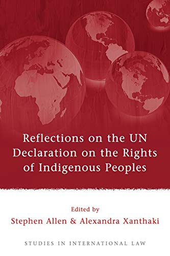 9781841138787: Reflections on the UN Declaration on the Rights of Indigenous Peoples (Studies in International Law)