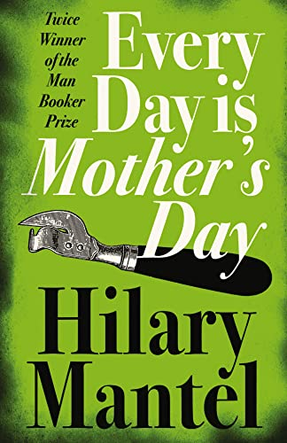 9781841153391: Every Day Is Mother's Day