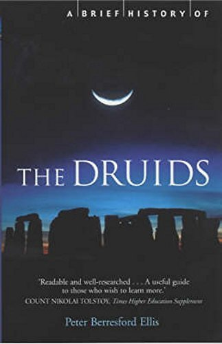 9781841194684: A Brief History of the Druids (Brief Histories)