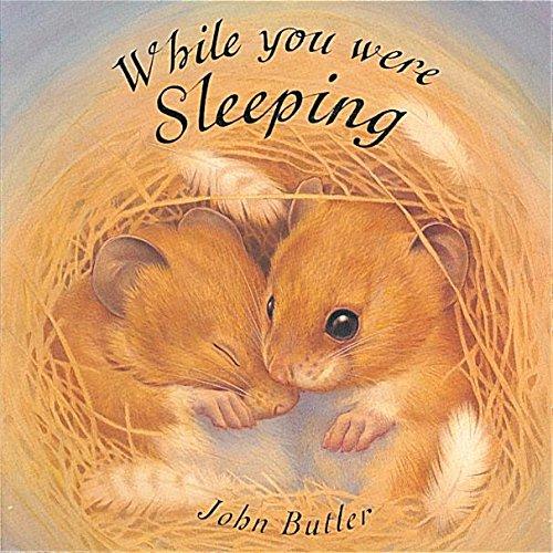 While You Were Sleeping (Little Orchard Board Book): John Butler