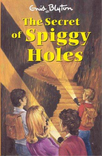 9781841351445: The Secret of Spiggy Holes (Secret Series)