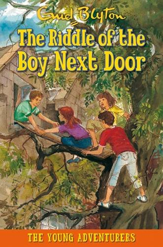 9781841357423: The Riddle of the Boy Next Door (Young Adventurers)