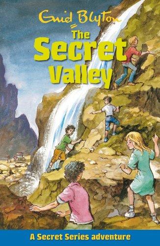 9781841357539: The Secret Valley