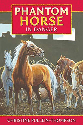 9781841358246: Phantom Horse 4: Phantom Horse in Danger