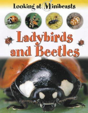 9781841381664: MINIBEASTS LADYBIRDS & BEETLES (Looking at Minibeasts)