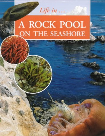 9781841381725: Life In_ a Rock Pool on the Seashore