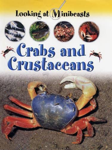 9781841383507: Crabs and Other Crustaceans (Looking at Minibeasts)