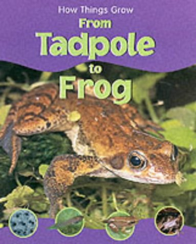 9781841383743: From Tadpole to Frog (How Things Grow)