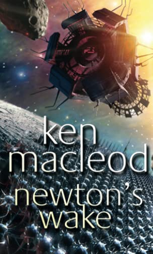 9781841492247: Newton's Wake: Novel