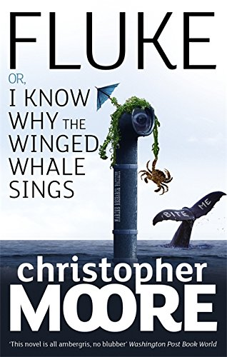 9781841496177: Fluke: Or, I Know Why the Winged Whale Sings