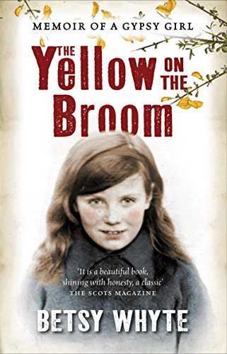 9781841581354: The Yellow on the Broom