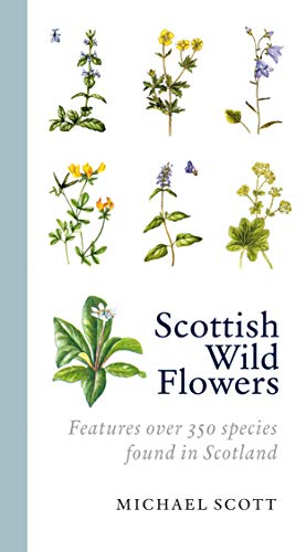 9781841589534: Scottish Wild Flowers