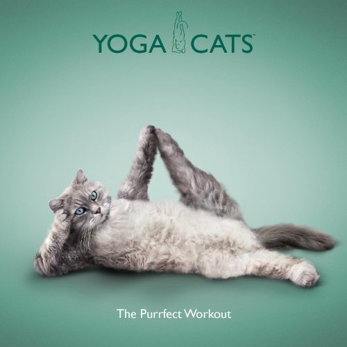 9781841613567: Yoga Cats: The Purrfect Workout