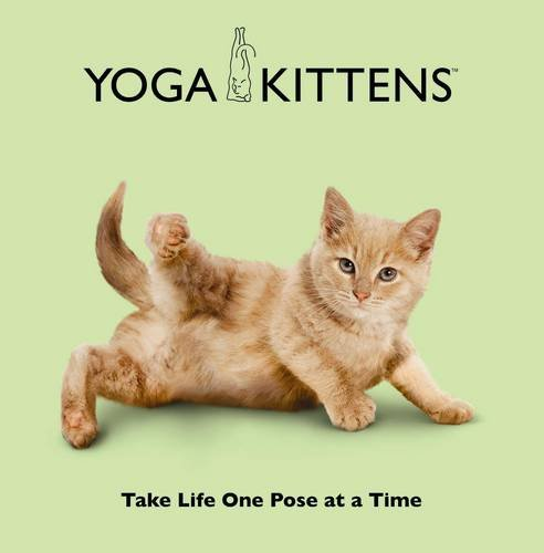 9781841613628: Yoga Kittens: Take Life One Pose at a Time