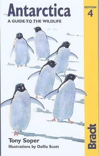 9781841621319: Antarctica: A Guide to the Wildlife, 4th (Bradt Guides)