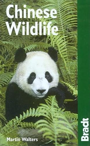 9781841622200: Chinese Wildlife (Bradt Travel Guide Chinese Wildlife)