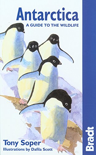 9781841622385: Antarctica Wildlife 5th (Bradt Guides)