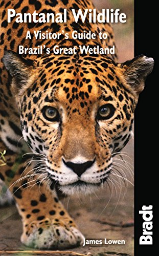 Pantanal Wildlife: A Visitor's Guide to Brazil's: Lowen, James