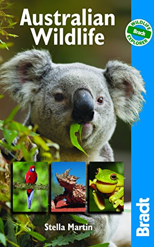 9781841623245: Australian Wildlife: Wildlife Explorer (Bradt Wildlife Guides)