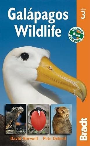9781841623603: Galapagos Wildlife (Bradt Travel Guide. Galapagos Wildlife)