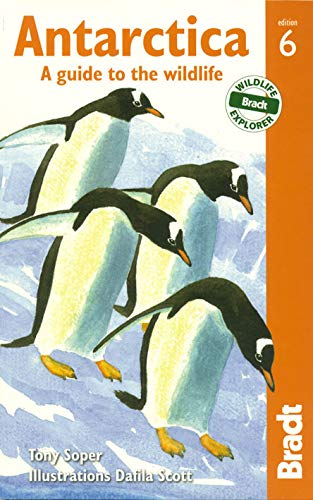 9781841624839: Antarctica: A Guide To The Wildlife (Bradt Guides)