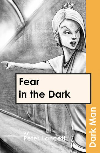 9781841674124: Fear in the Darkv. 13 (Dark Man (Ransom))