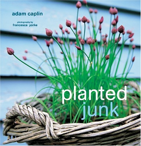 Planted Junk