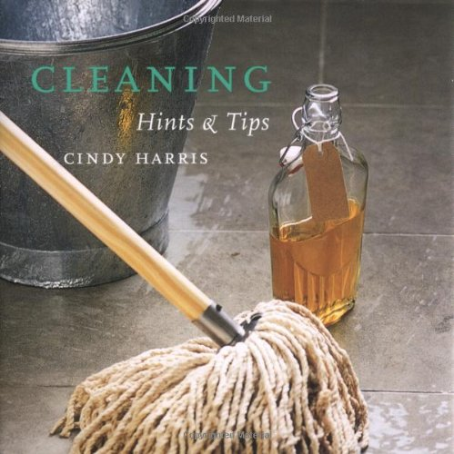 9781841728483: Cleaning Hints and Tips