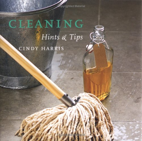 9781841728490: Cleaning: Hints & Tips