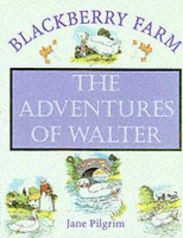 9781841860053: Adventures of Walter