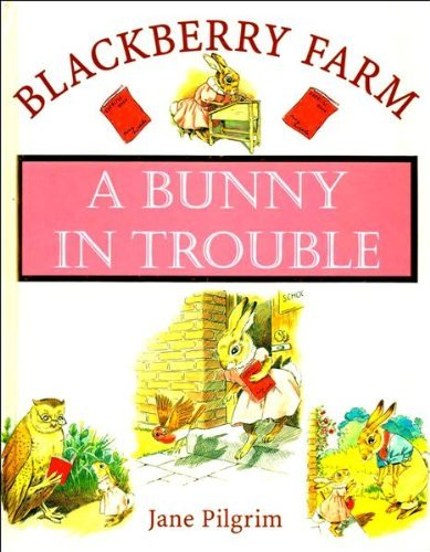 9781841860381: A Bunny in Trouble (Blackberry Farm)
