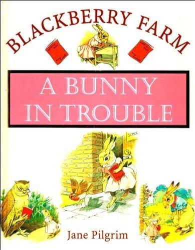 9781841860381: A Bunny in Trouble (Blackberry Farm)