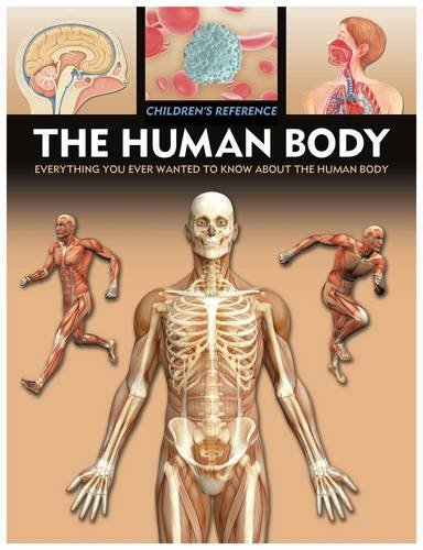 9781841938219: The Human Body (Children's Reference)