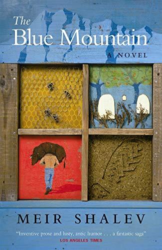 9781841952420: The Blue Mountain: A Novel