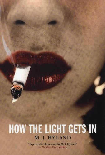 9781841955483: How the Light Gets in