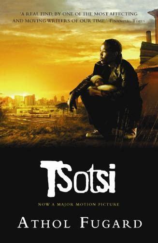 9781841955667: Tsotsi