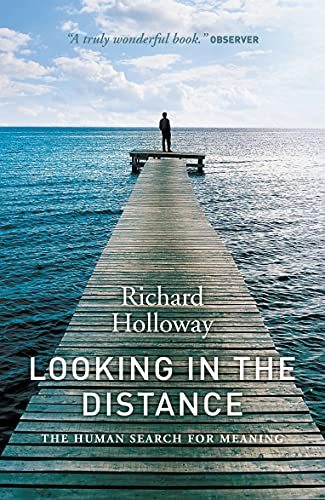 9781841956039: Looking In the Distance: The Human Search for Meaning