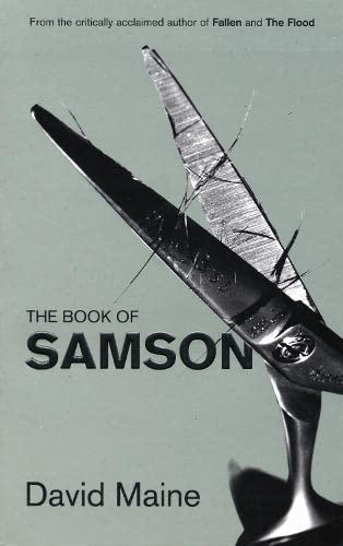 9781841958859: Samson