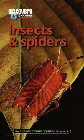 Insect Explore World Insects Abebooks