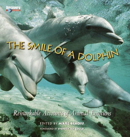9781842010143: The Smile Of A Dolphin: Remarkable Accounts Of Animal Emotions