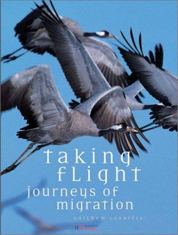 Taking Flight: Lesaffre, Guilhem