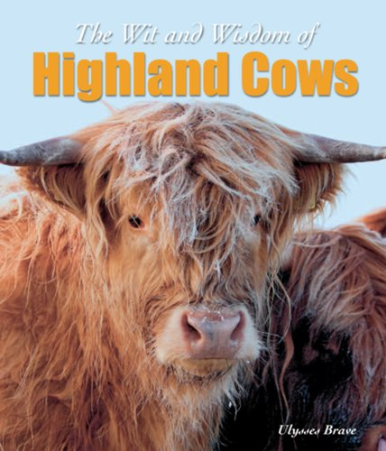 9781842042847: Wit & Wisdom of Highland Cows