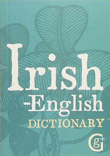 9781842052969: Irish-english Dictionary