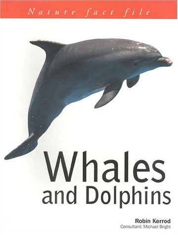 9781842154243: Whales and Dolphins (Nature Factfile)