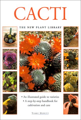 9781842155820: Cacti (Little Plant Library)
