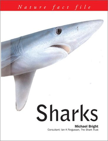 Sharks: Nature Fact File Series: Bright, Michael
