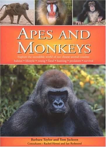 9781842159552: Apes and Monkeys