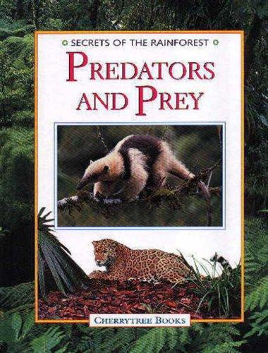 9781842340035: Predators and Prey (Secrets of the Rainforest)