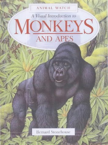 9781842341162: A Visual Introduction to Monkeys (Animal Watch)