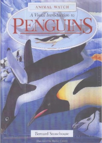 9781842341179: A Visual Introduction to Penguins (Animal Watch)